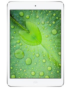 iPad mini 2Wi-Fi + Cellular