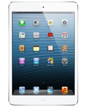 iPad miniWi-Fi + Cellular